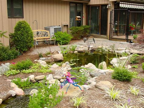 backyard ecosystem 1000 ideas about pond landscaping on pinterest ponds