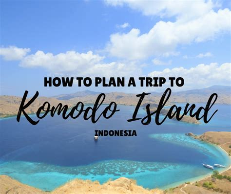 how to a where to and how to plan a trip to komodo island things to do where to stay where to eat