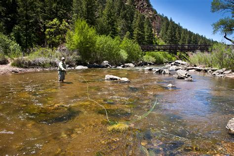 colorado fishing reports south platte south platte deckers fishing report june 8 2011 denver