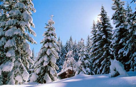 Imagenes Invierno Wasap | paisajes de invierno para portada de facebook o fondo de