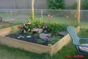another box turtle outdoor habitat my imaginary backyard