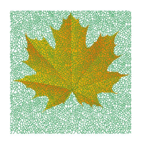 vector leaf tutorial how to draw a fall leaf using adobe illustrator