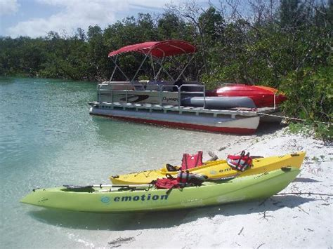 marco island boat rental reviews marco island kayak adventures fl top tips before you go