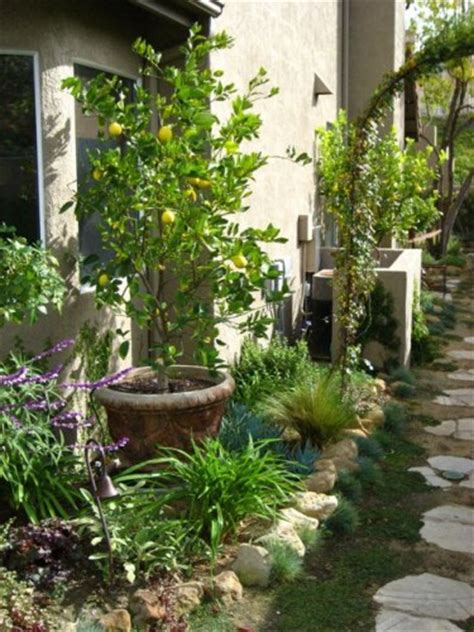 Small Narrow Garden Ideas Small Narrow Garden Design Pictures Pdf