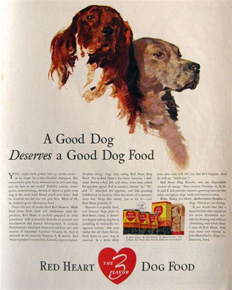 irish setters gun dog magazine 1939 red heart dog food ad english irish setter