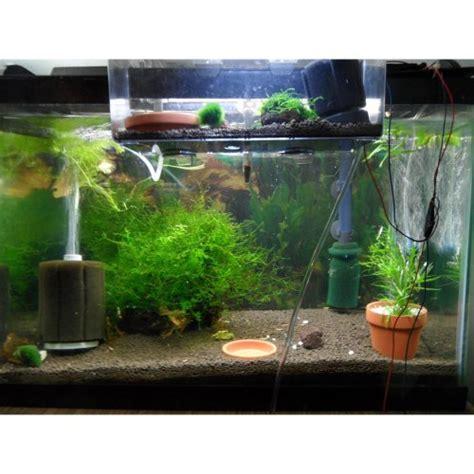 membuat filter aquarium mini tabstore xy 2836 2 0 x 6 0 d h mini aquarium tank mini