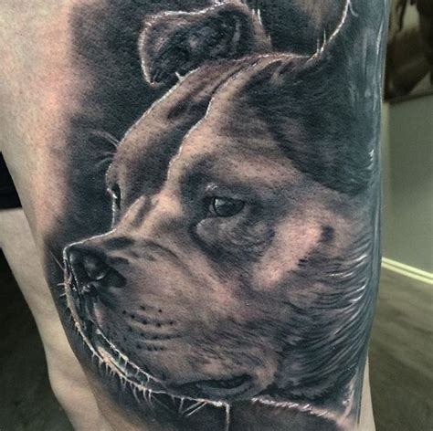 testament tattoo best 25 portrait ideas on pet