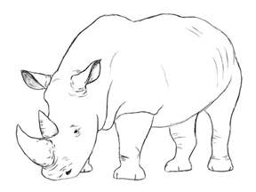 how to draw a realistic rhino how to draw a rhinoceros step 3 apps directories