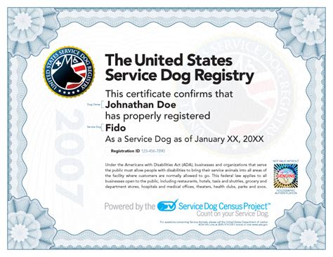 how to your puppy to be a service how to certify a service care 4 your pets