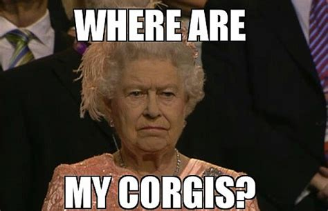 Queen Meme - the best of the unimpressed queen meme