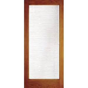 door with built in mini blinds window door