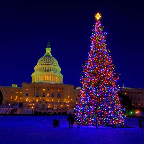 us capital christmas tree flickr photo sharing
