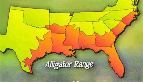 alligators in texas map alligator range in texas