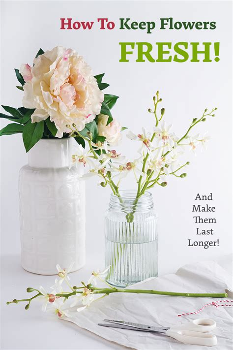 how to keep flowers fresh and make them last longer