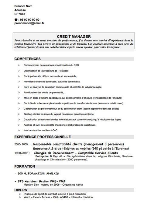 Cv Par Competences Exemples Gratuit by Fabuleux Cv Responsable Commercial Gratuit Yb53 Humatraffin