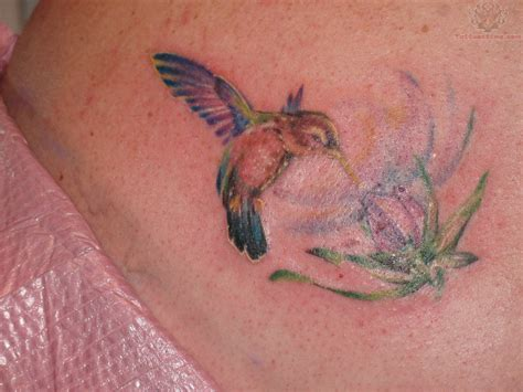 hummingbird with flower tattoo designs tattoos of humming bird flowers and hummingbird tattoos