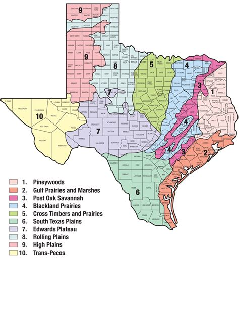 texas 4 regions map plants of texas rangelands 187 state regions