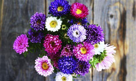 festa della mamma fiori fiori per la festa della mamma www stile it