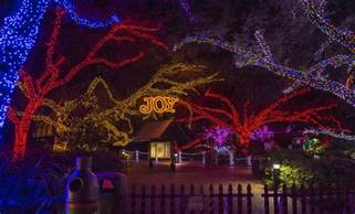 columbus zoo lights tickets zoo lights houston 2013 365 things to do in houston