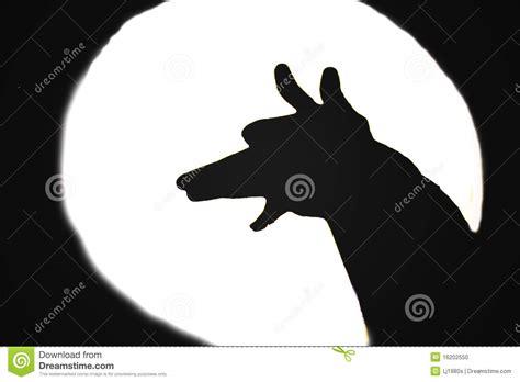 barking at barking at the moon stock photo image 16202550