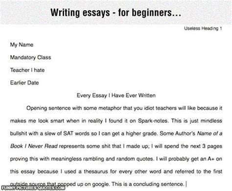 Writing Quotes In Essays by Australian Essay Writers 7th Quarter Essay Buy