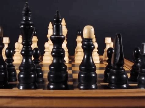 format to gif chess gif create discover and share on gfycat
