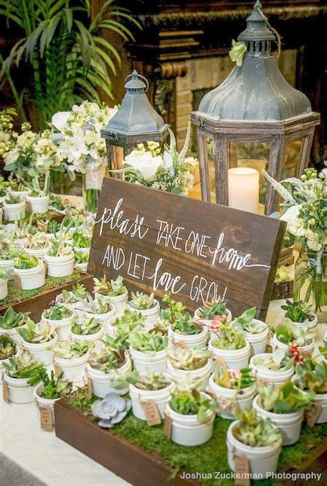 home   love grow cacti favors