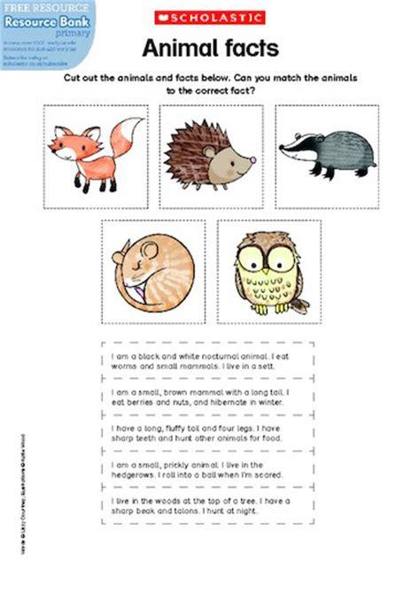 new year fact sheet ks1 animal facts free primary ks1 teaching resource scholastic