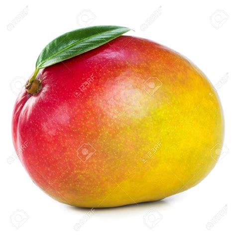 Fruit Mango hotel r best hotel deal site