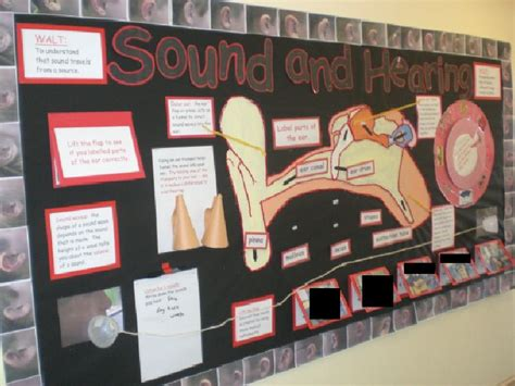 ideas for ks2 science club sound and hearing classroom display photo photo gallery