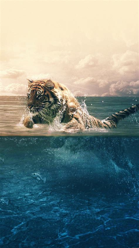 wallpaper iphone 6 tiger for iphone x iphonexpapers