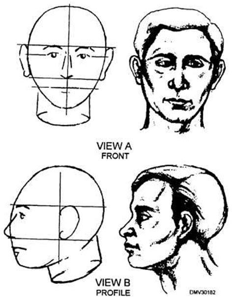 how to part an egg shape head head 14262 156