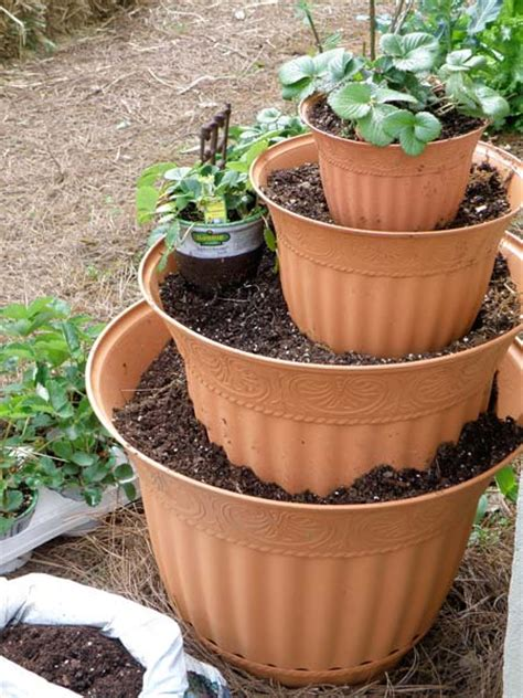 Strawberry Tower Planter by Grow A Strawberry Bonnie Plants