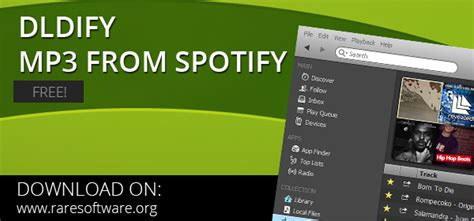 how to download mp3 from spotify online download free mp3 from spotify dldify rare software