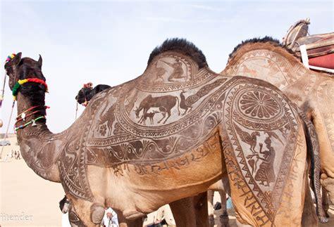 tattoo maker in bikaner animals camelart beautiful camels things camel