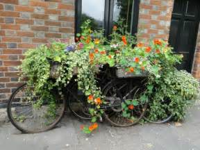 all about gardening and nature container gardening ideas unusual hanging flower baskets