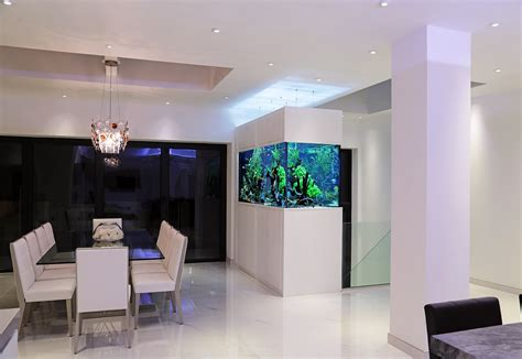 Aquarium Room Divider Serene Modern Interior Aquarium Architecture