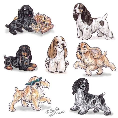 american cocker spaniels by bafa on deviantart