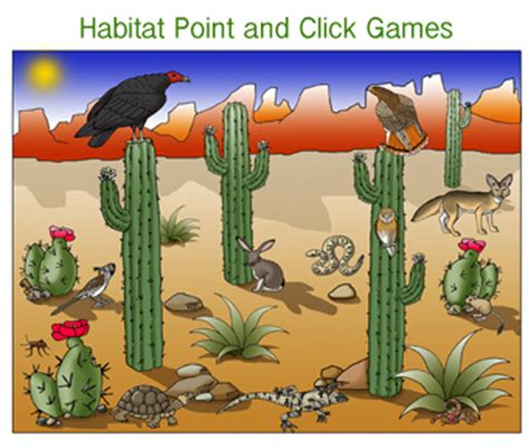 the edible and otherwise its habitat and its time of growth with photographic illustrations of nearly all the common species classic reprint books desert habitat matching interactive
