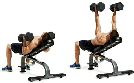 neutral grip barbell bench press fit with chris chest and biceps