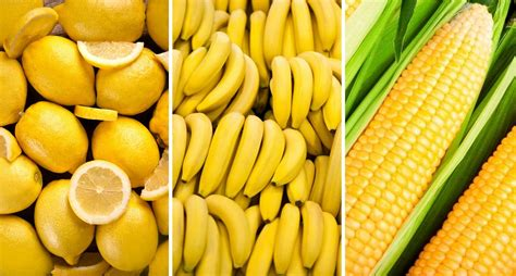 food color how the food color affects the s diets
