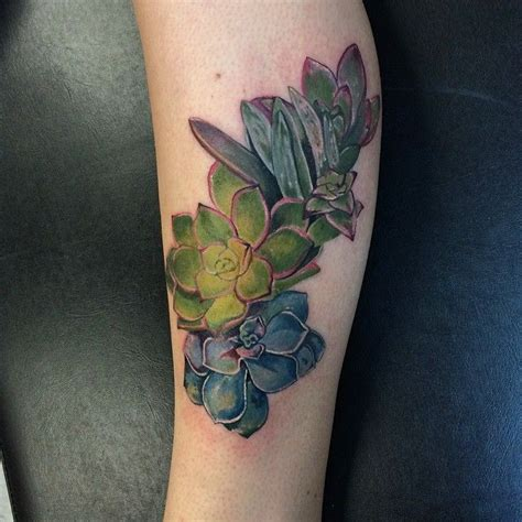watercolor tattoos in boston cactus by dia moeller at boston company boston ma
