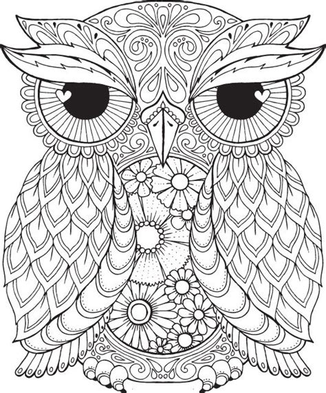 detailed owl coloring page seth owl colour with me hello angel by helloangelcreative