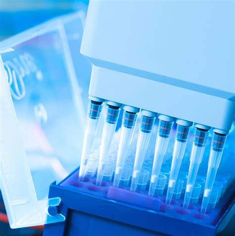 creatinine urine creatinine urine test