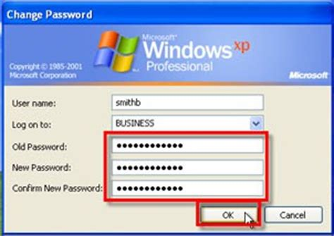 reset password windows xp professional domain how to change your business domain password on a windows