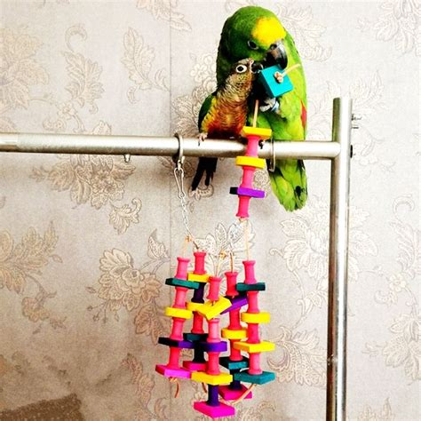 Bird Toys Toys Quality Pet Toys best 25 macaw cage ideas on bird aviary