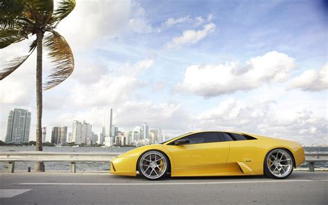 Lamborghini Of Palm Cars Lamborghini Palm Trees Wallpaper 1680x1050 288755