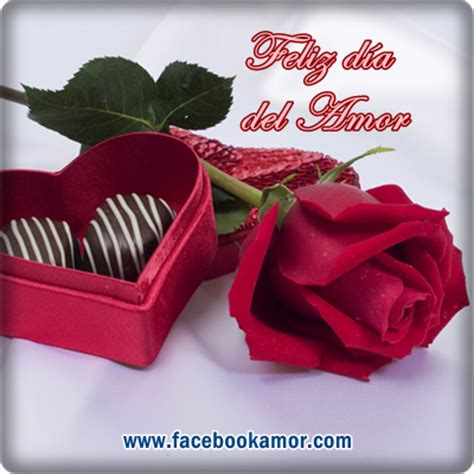 imagenes para perfil rosas im genes de rosas blancas para perfil de facebook imagenes
