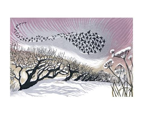 Poster Vintage V052 midwinter starlings by niki bowers a044w