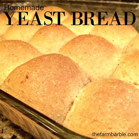 Can You Use Regular Yeast In A Bread Machine Homemade Yeast Rolls The Farm Barbie Blog Grit Magazine